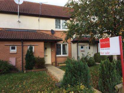 2 Bedrooms Terraced House for sale in Bourne Avenue, Darlington