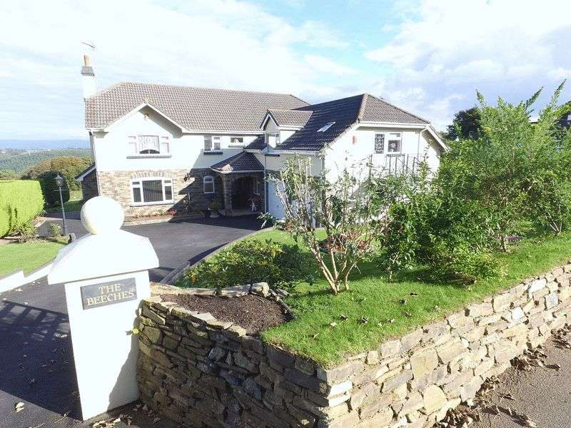 4 Bedrooms Detached House for sale in Delaware Road, Gunnislake