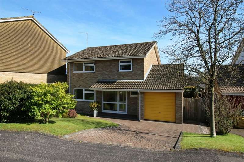 3 Bedrooms Detached House for sale in Lordsfield Gardens, Overton, Basingstoke, RG25