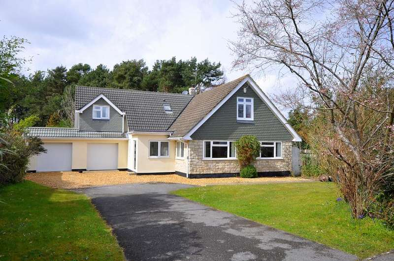 6 Bedrooms Detached Bungalow for sale in Ashley Heath, Ringwood, BH24 2EZ