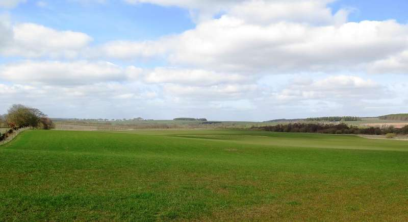 Land Commercial for sale in Lands of Cleghorn Farm, Cleghorn ML11