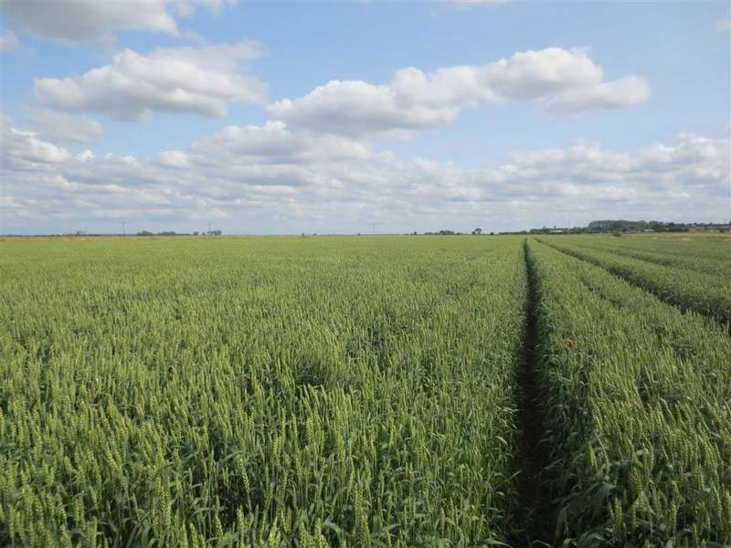 Land Commercial for sale in Delph Road, Branston Booths, Lincoln, Lincolnshire