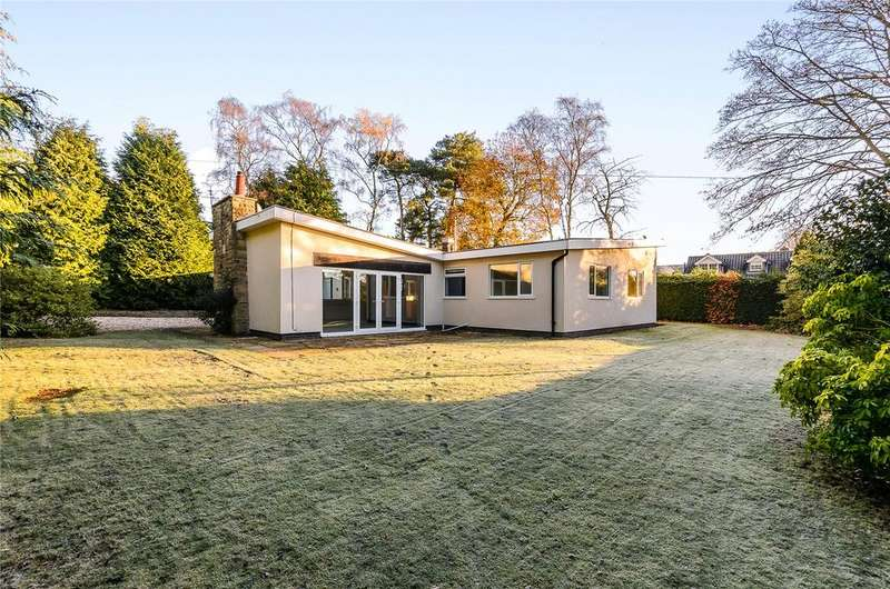 4 Bedrooms Detached Bungalow for sale in Gorse Hill, Ravenshead, Nottingham, NG15