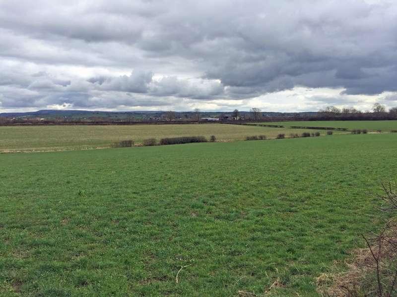 Land Commercial for sale in 83 Acres Land, Danby Wiske, Northallerton, DL6 2NT