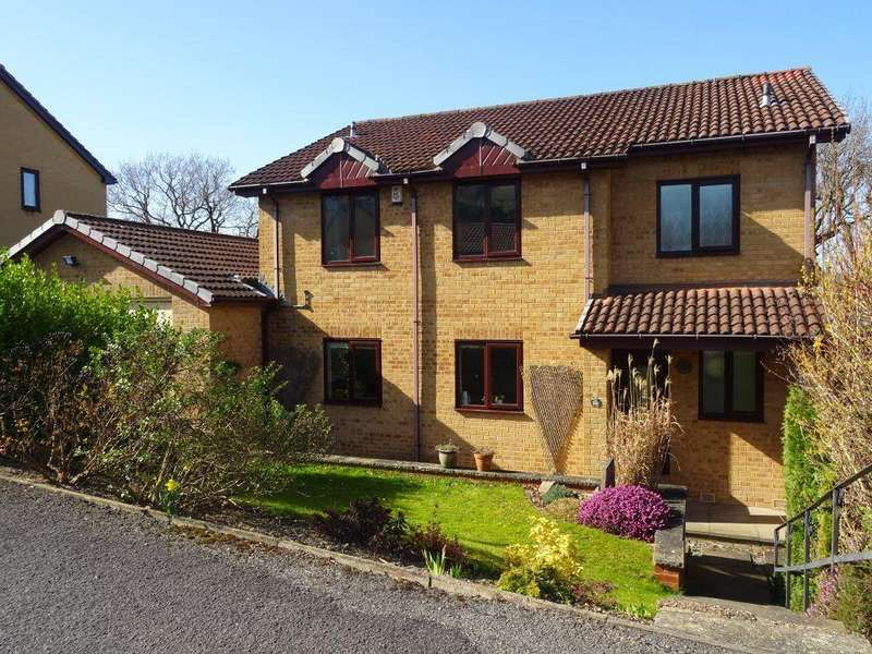 4 Bedrooms Detached House for rent in Twentywell View, Bradway, S17 4PX