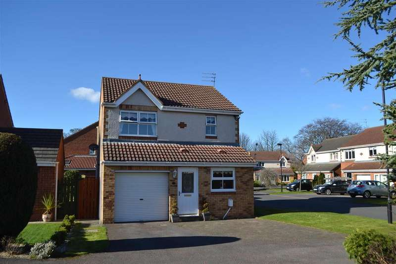 3 Bedrooms Detached House for sale in Englemann Way, Sunderland