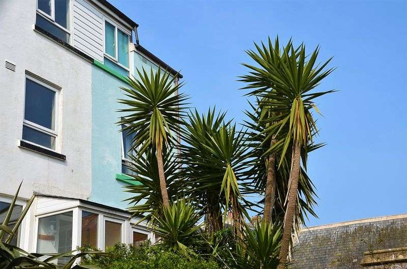 3 Bedrooms Terraced House for sale in CHURCH STREET BRIXHAM