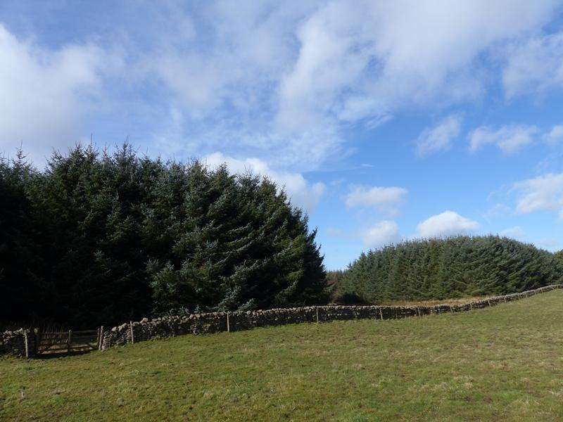 Land Commercial for sale in Lauder, Scottish Borders TD2