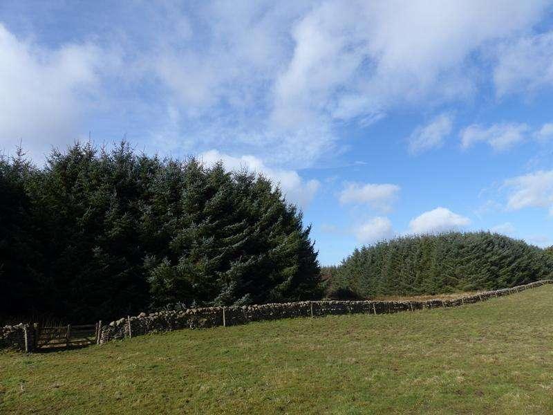Land Commercial for sale in Lauder, Scottish Borders TD2