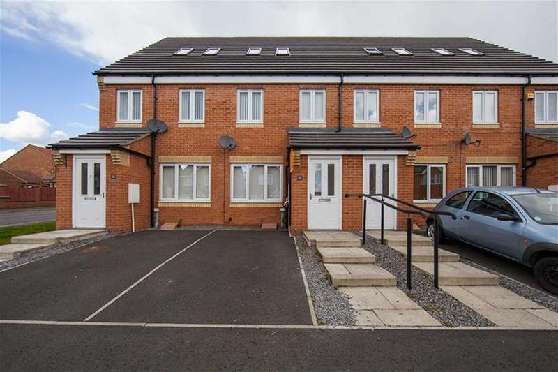3 Bedrooms Terraced House for sale in Horsley View, Wallsend, Tyne Wear, NE28