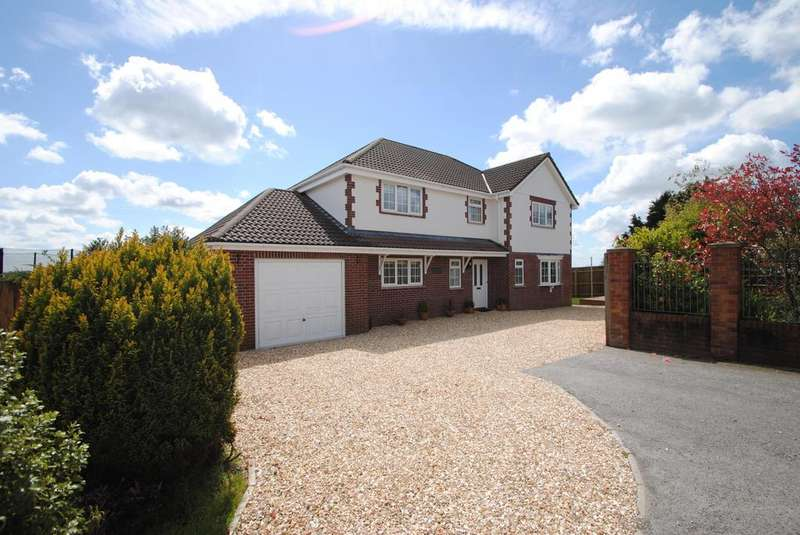 4 Bedrooms Detached House for sale in Pound Meadow, High Bullen