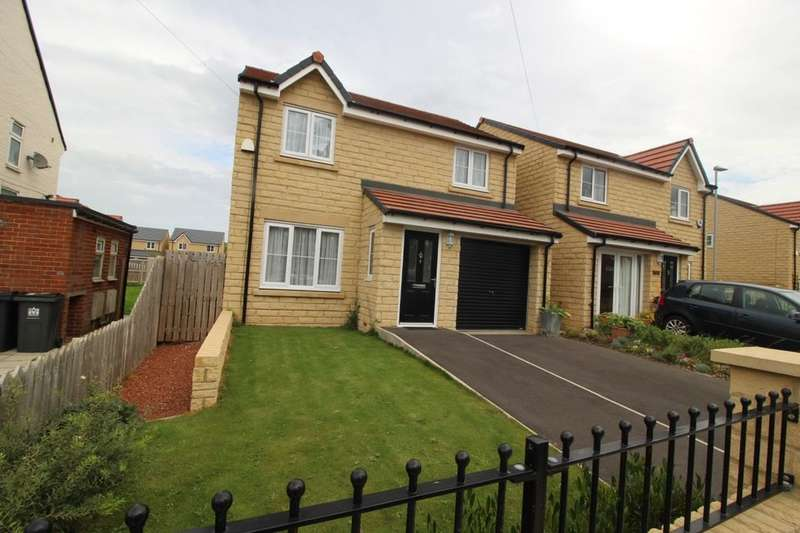3 Bedrooms Detached House for sale in Minors Crescent, Darlington, DL3