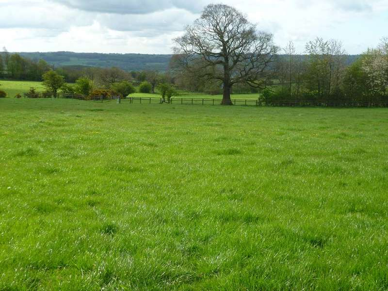 Land Commercial for sale in Land at Braythorne Lane, Stainburn, Otley LS21 2LW