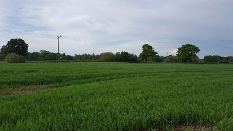 Land Commercial for sale in Plumley, Knutsford
