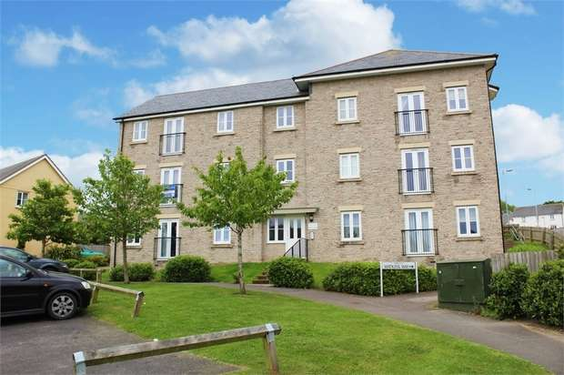 2 Bedrooms Flat for sale in Watkins Way, Bideford, Devon