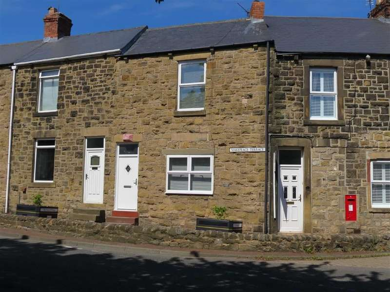 2 Bedrooms Terraced House for sale in Makepeace Terrace, Springwell Village, Gateshead