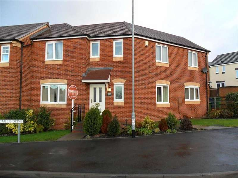 3 Bedrooms Semi Detached House for sale in Capercaillie Drive, Cannock