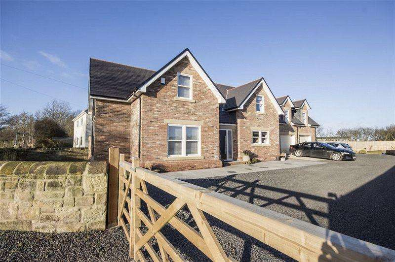 4 Bedrooms Detached House for sale in Park View, Wideopen