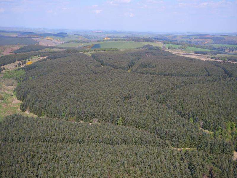 Land Commercial for sale in Lethem, The Hass Broombaulks Forests, Carter Bar, Scottish Borders