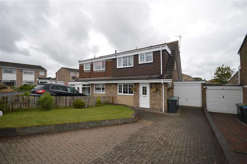 3 Bedrooms Semi Detached House for sale in Trefoil Road, Stanley