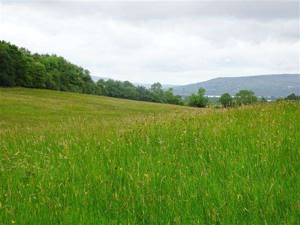 Land Commercial for sale in Aughrim