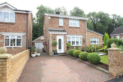 3 Bedrooms Detached House for sale in Buckingham Court, Hamilton