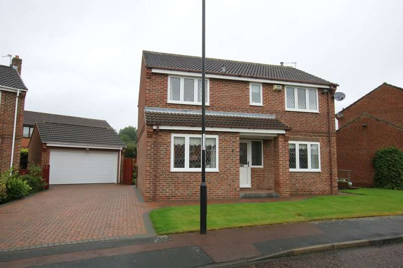 4 Bedrooms Detached House for sale in Breamish Drive, Washington, NE38