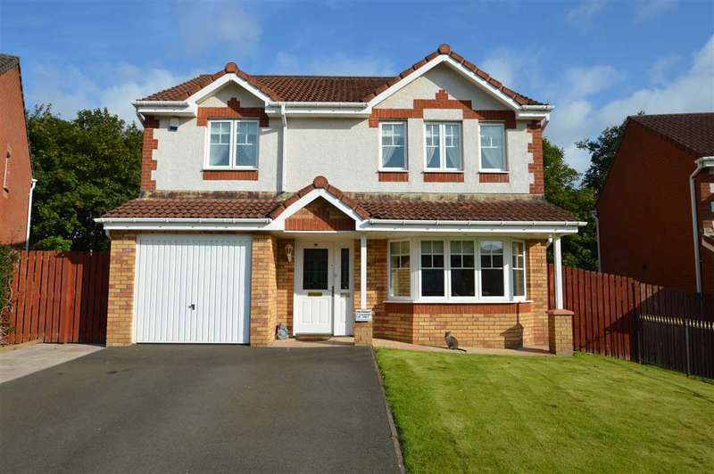 4 Bedrooms Detached House for sale in Allan Grove, Bellshill