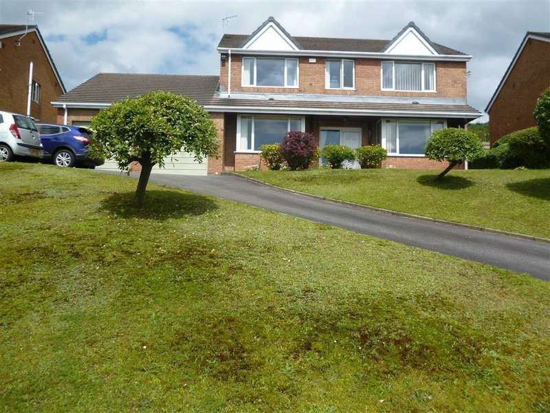 4 Bedrooms Detached House for sale in Plas Y Fforest, Swansea, SA4