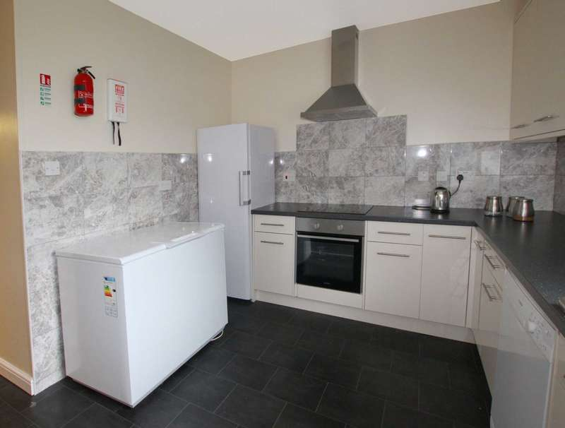 12 Bedrooms Semi Detached House for rent in Christchurch Road, Reading