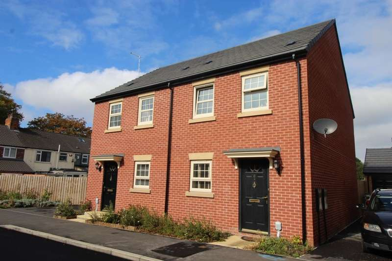 3 Bedrooms Semi Detached House for sale in Black And Amber Way, Hull, HU4