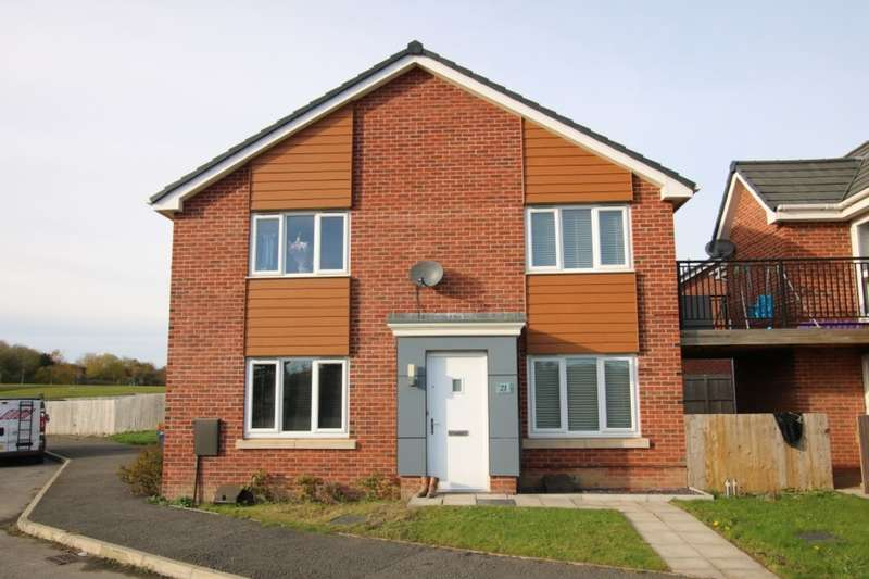 2 Bedrooms Semi Detached House for sale in Teal Farm Way, Washington, NE38