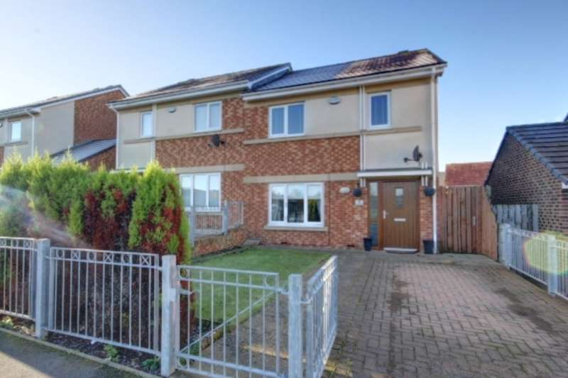 2 Bedrooms Semi Detached House for sale in Holywell Road, Houghton Le Spring, DH5