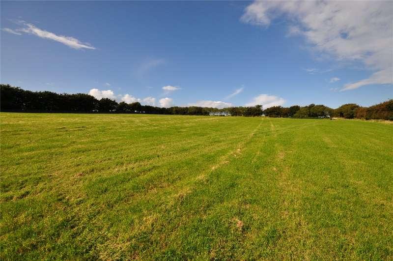 Land Commercial for sale in Trentishoe, Parracombe, Barnstaple, Devon, EX31