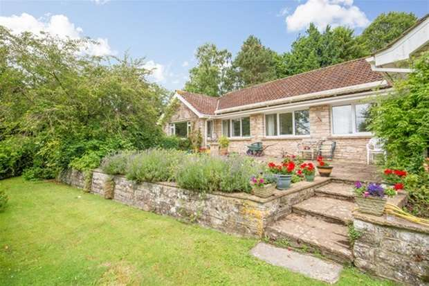 4 Bedrooms Detached Bungalow for sale in Ditcheat, Shepton Mallet