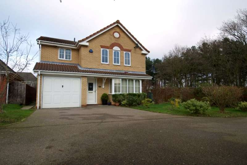 4 Bedrooms Detached House for sale in Musketeer Way, Dussindale , Norwich, NR7
