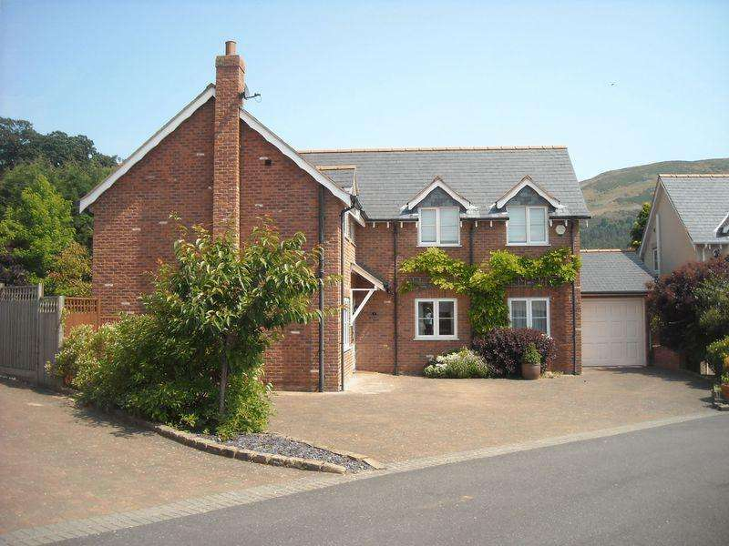 4 Bedrooms Detached House for sale in Banc Y Chwarel, Denbigh