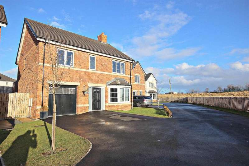 4 Bedrooms Detached House for sale in Holby Garth, Browney, Durham
