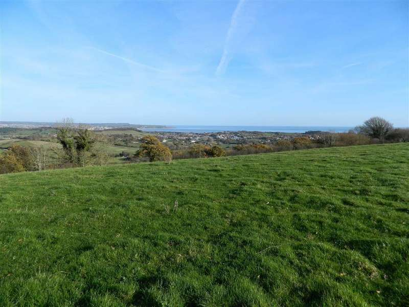 Land Commercial for sale in Off Ashcombe Road, Lower Dawlish Water, Dawlish, Devon, EX7
