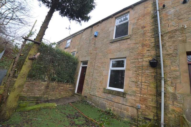 2 Bedrooms Terraced House for sale in Evelyn Tce, Blaydon