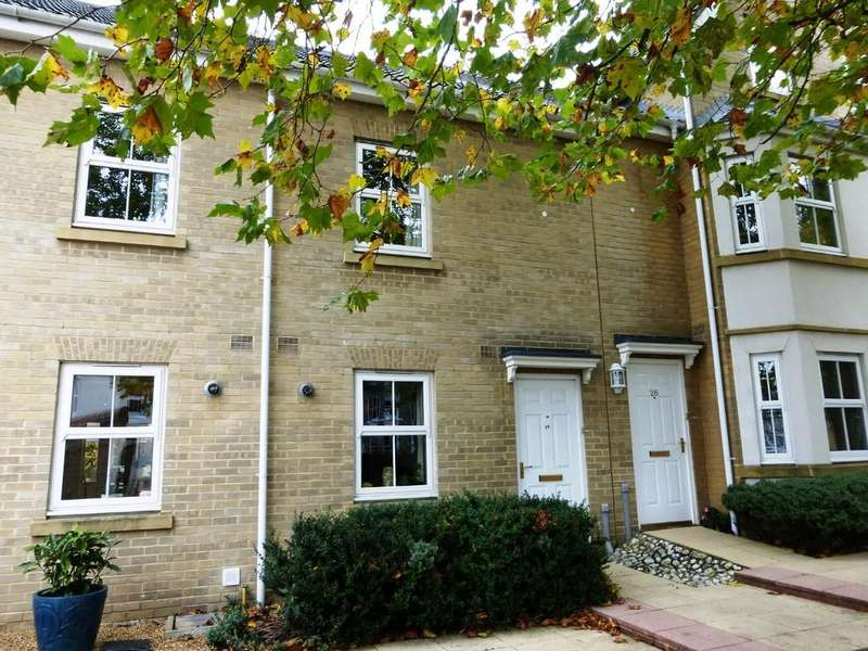 3 Bedrooms Town House for rent in Norwich