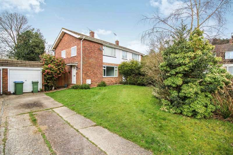 3 Bedrooms Semi Detached House for sale in North Holmes Close, Horsham