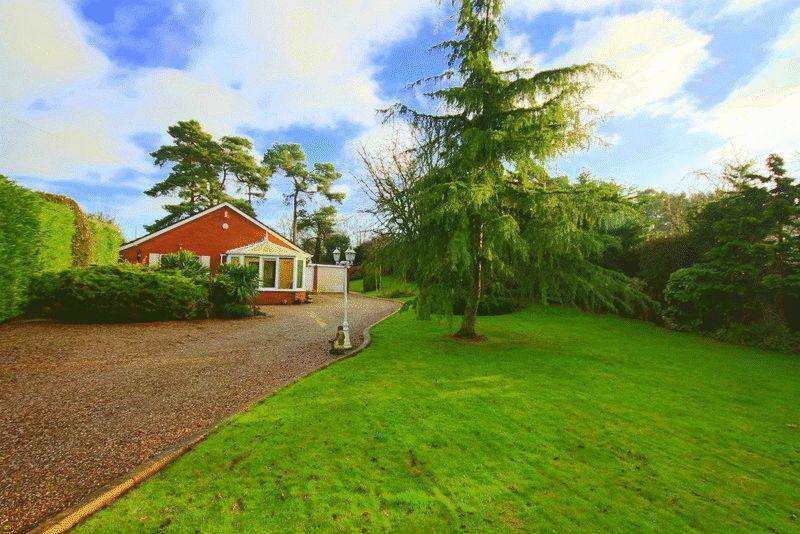 3 Bedrooms Detached Bungalow for sale in Betton Road, Market Drayton
