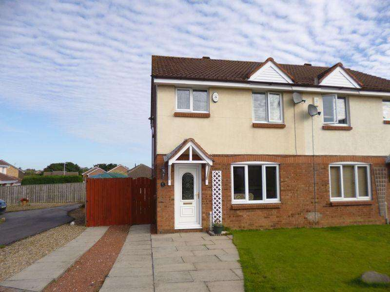 3 Bedrooms Semi Detached House for sale in Furness Close, Bishop Auckland
