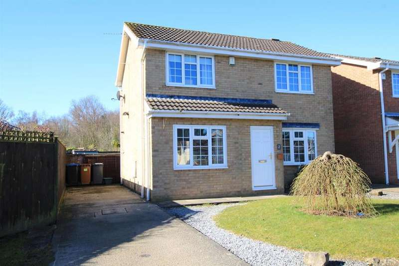 3 Bedrooms Detached House for sale in Dudley Drive, Woodham
