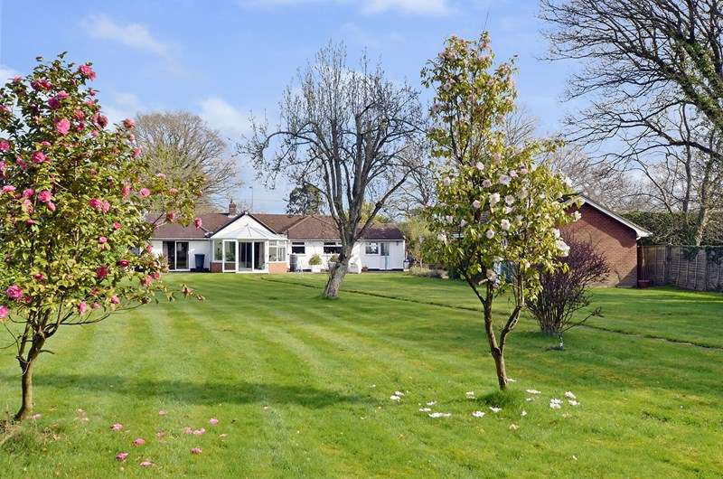 4 Bedrooms Detached Bungalow for sale in Ringwood Road, Three Legged Cross, Wimborne