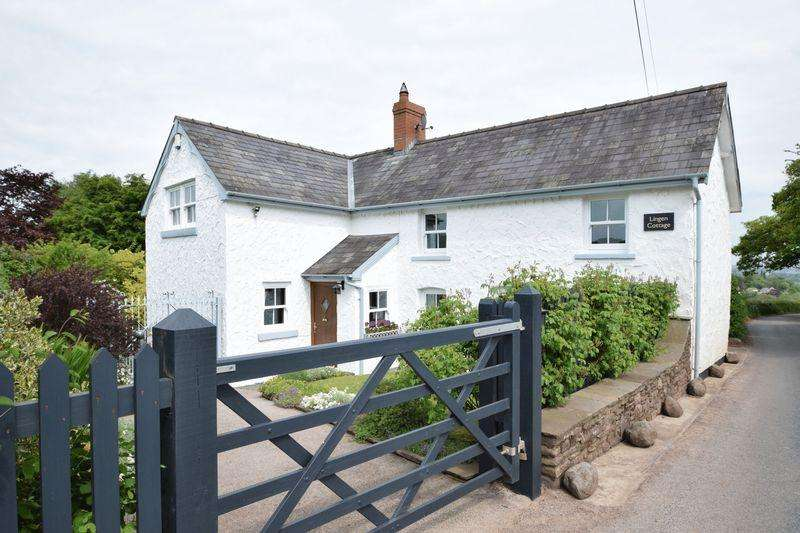 3 Bedrooms Detached House for sale in Llanvapley, Abergavenny
