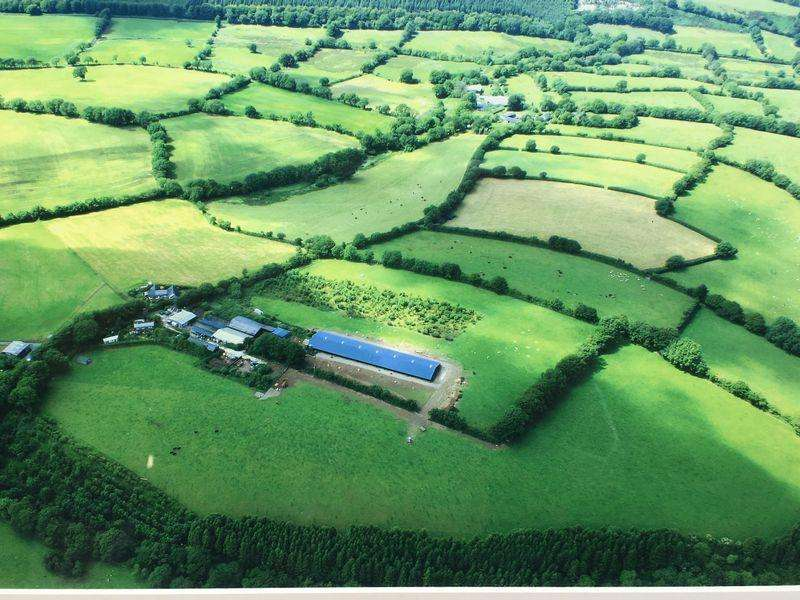 Farm Commercial for sale in Lydford, Okehampton