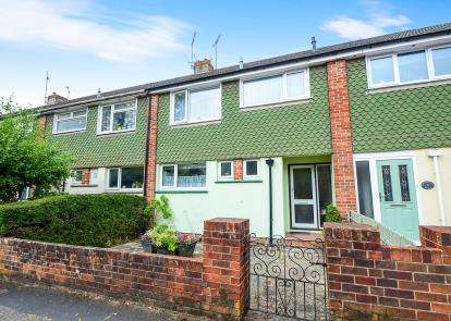 3 Bedrooms Terraced House for sale in Decoy Road, Newton Abbot, Devon