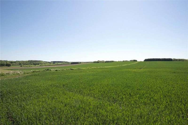 Farm Commercial for sale in Lot 2 - Ellon Farms Portfolio, Ellon, Aberdeenshire, AB41